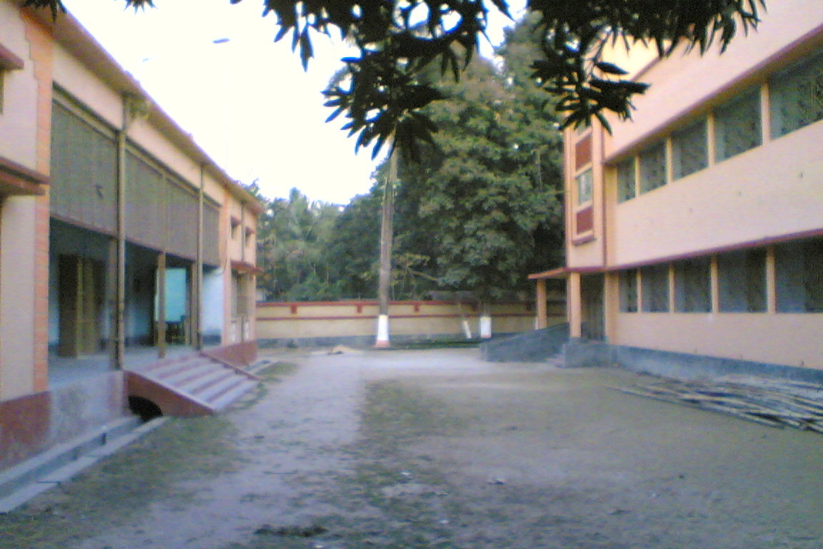 The backyard of the school